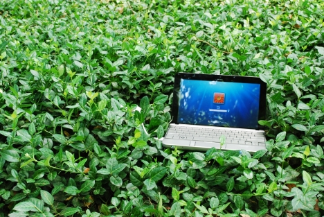 Cu HP la Iarba Verde
