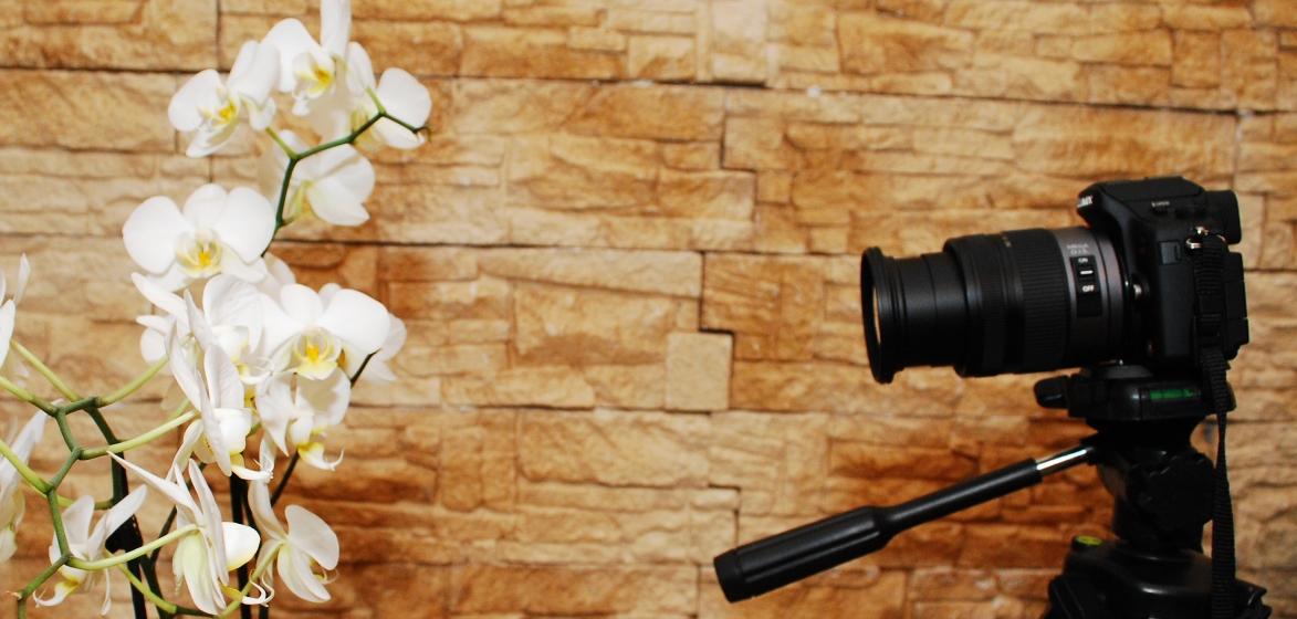 panasoni_gh1_foto_orhidee